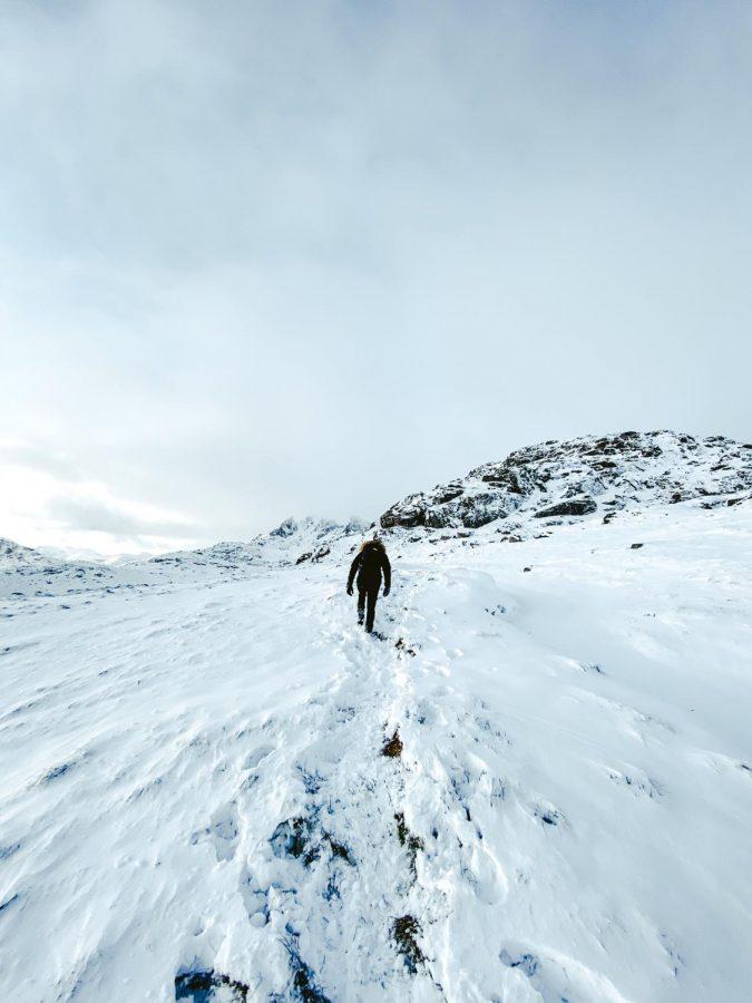 The+Arctic+is+in+Danger