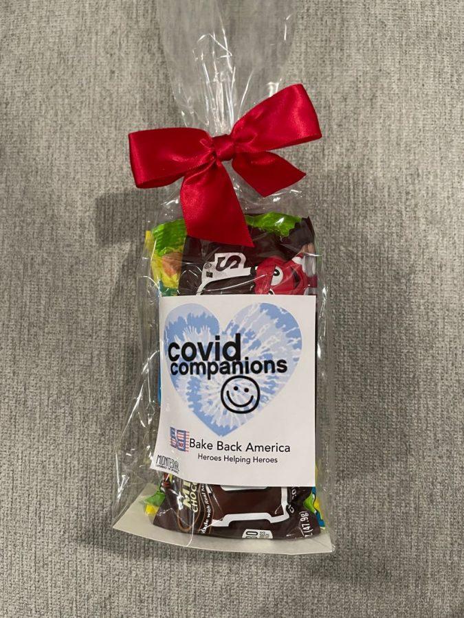 Commacks Covid Companions